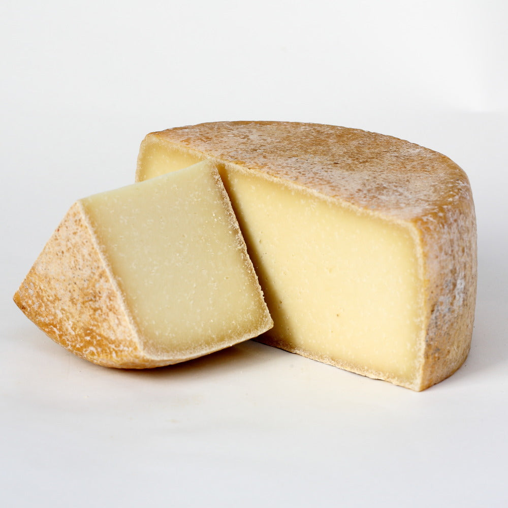 wheel of hard sheep's milk cheese