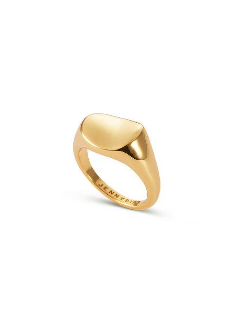 Dee Signet Ring | 14k Gold Dipped