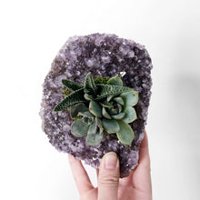 Load image into Gallery viewer, Amethyst Succulent Planter