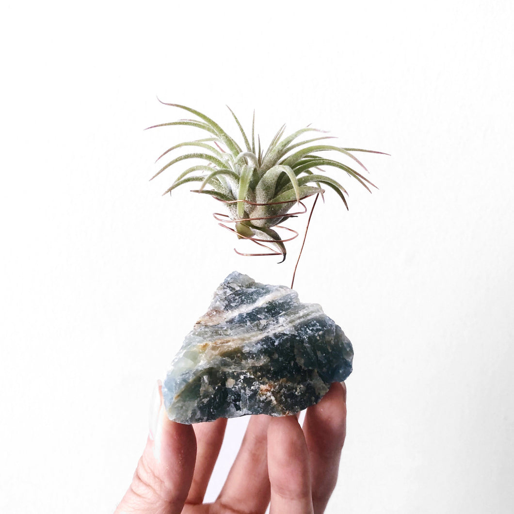 Blue Onyx Air Plant Holder