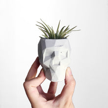 Load image into Gallery viewer, Geometric Skull Planter