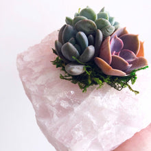 Load image into Gallery viewer, Rose Quartz Succulent Planter