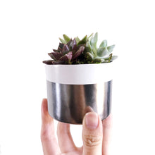 Load image into Gallery viewer, White & Silver Planter