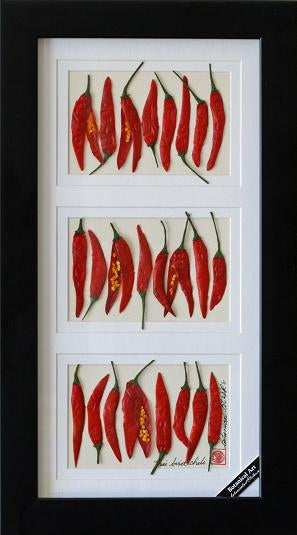 'Chili Peppers 3 opening' by Botanical Art by Diane De Roo