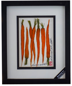 'Carrots Vegetable Shadow Box' by Botanical Art by Diane De Roo