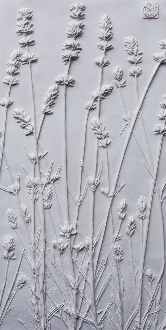 'Lavender Large Botanical Cast' by Botanical Art by Diane De Roo
