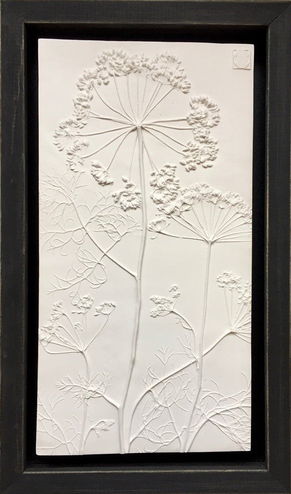 'Queen Anne's Lace Framed Botanical Cast' by Botanical Art By Diane