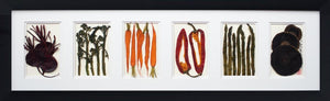 'Large Horizontal Collection' by Botanical Art by Diane De Roo