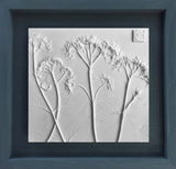 'Framed Botanical Cast - Slate Blue' by Botanical Art by Diane De Roo