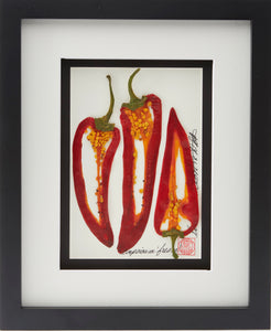 'Pepper Vegetable Shadow Box' by Botanical Art by Diane De Roo