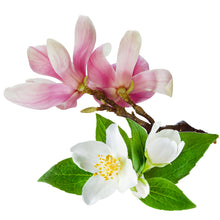 Load image into Gallery viewer, MAGNOLIA JASMINE