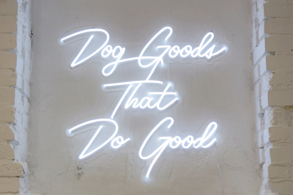 Dog Goods That Do Good Gone to the Dogs 103 7th Avenue Brooklyn New York