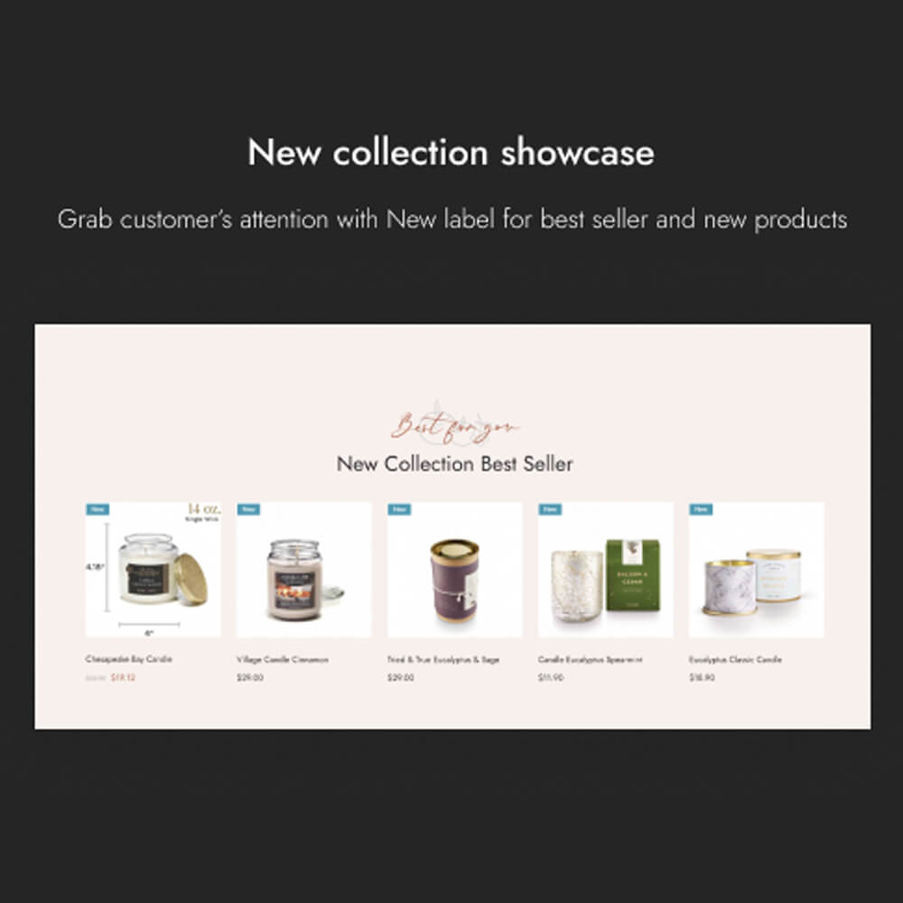 New collection showcase