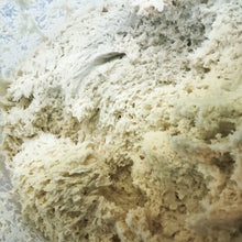 Load image into Gallery viewer, 200g Fresh Dough Ferment