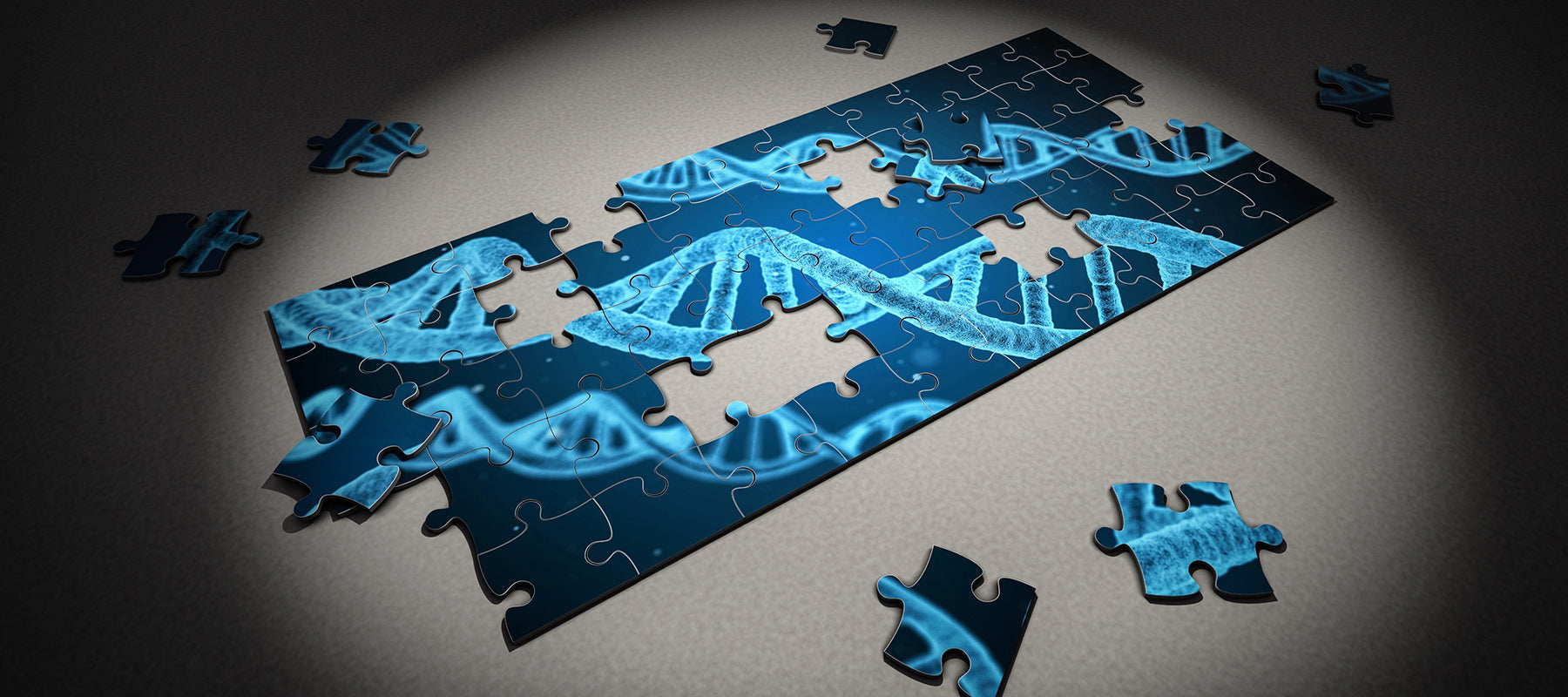 DNA Puzzle Sequencing