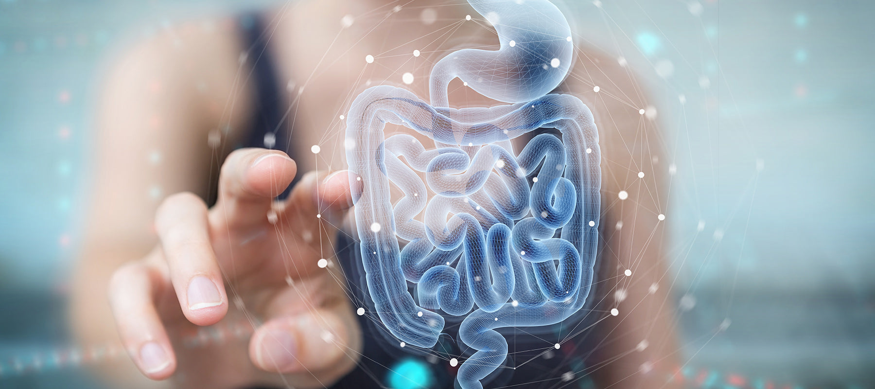 Exercise Gut Microbiome Stomach