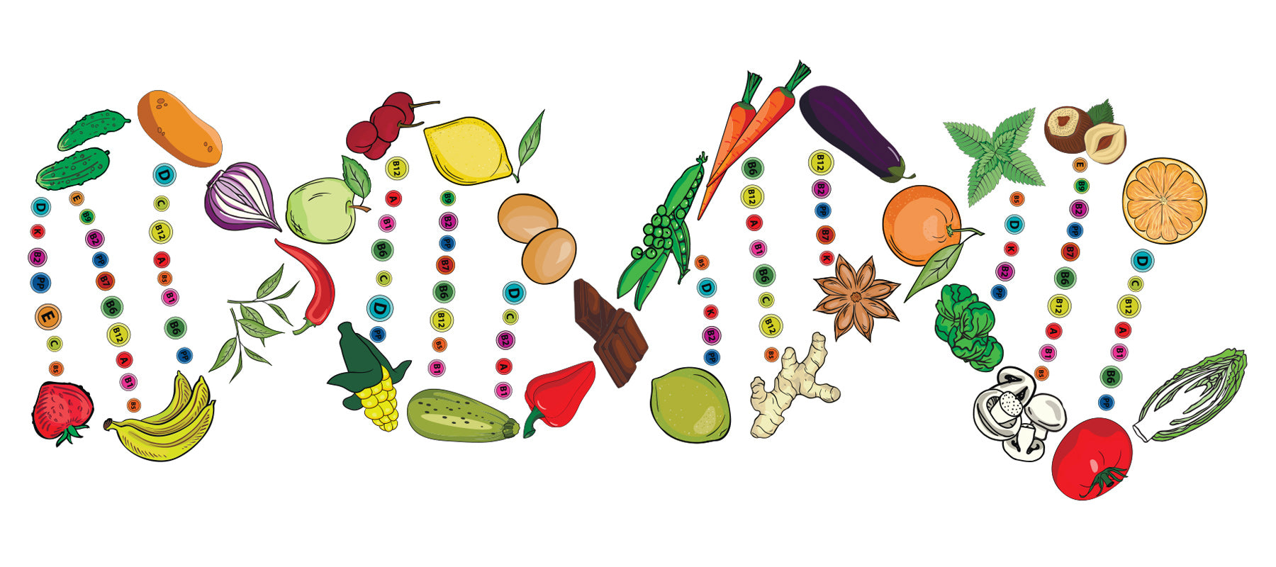 Nutrigenomics DNA Food Genes Interaction