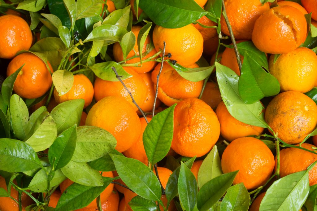 An orange a day keeps muscle loss at bay