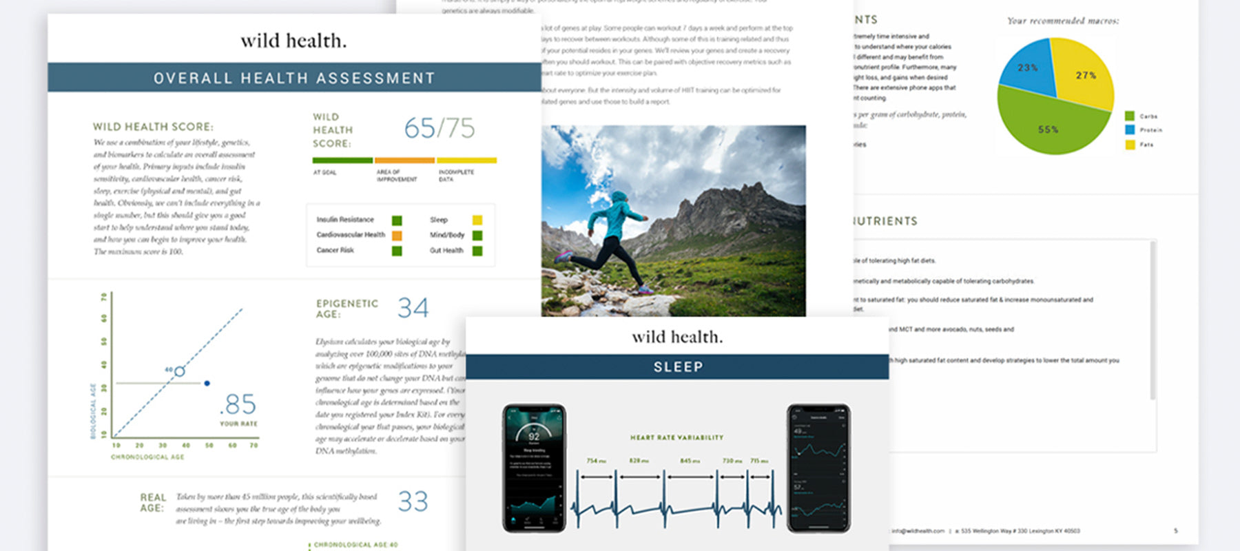 Wild Health Document Preview Functional Medicine