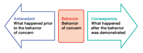 Fuction of Behavior in ABA Therapy