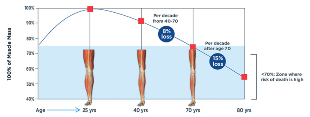 Muscle Decline Over Age Sarcopenia Muscle Mass