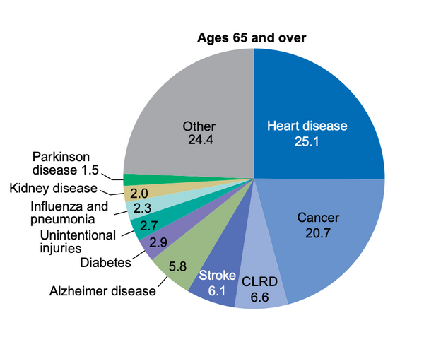 Age 65+ Leading Causes of Death