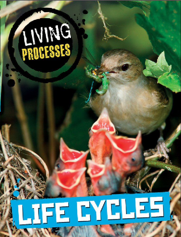 Life Cycles (Living Processes) by Wayland | Age 6+