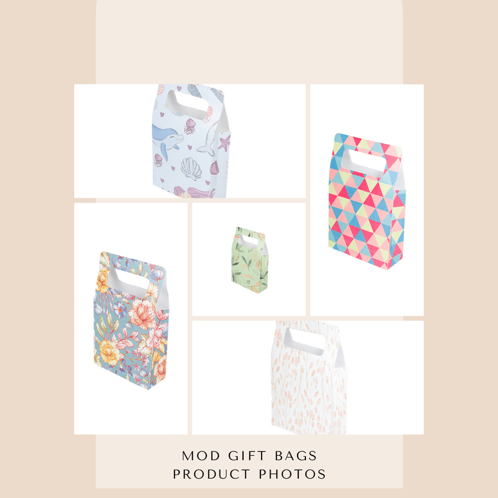 Mod Chic Gift Bag Product Photos