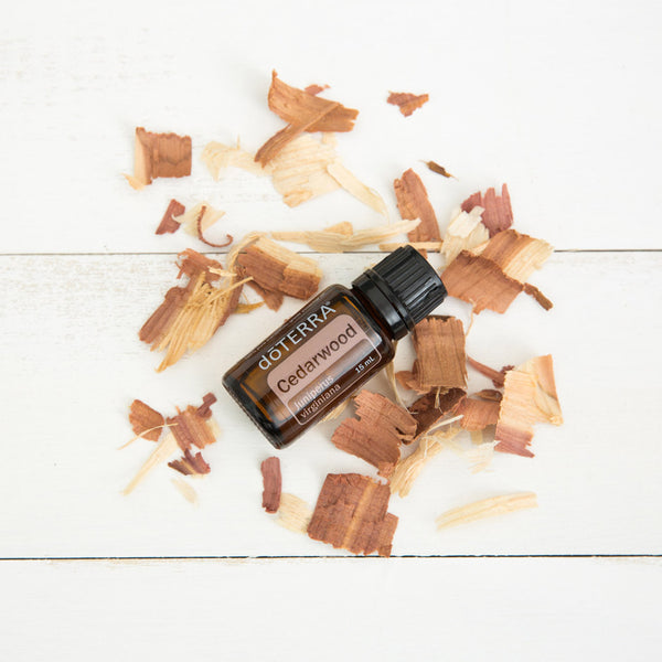 Cedarwood Essential Oil - Organic Boutique