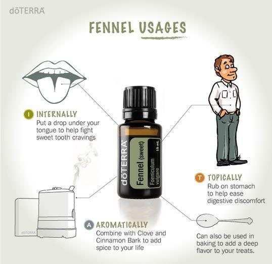 Fennel Essential Oil