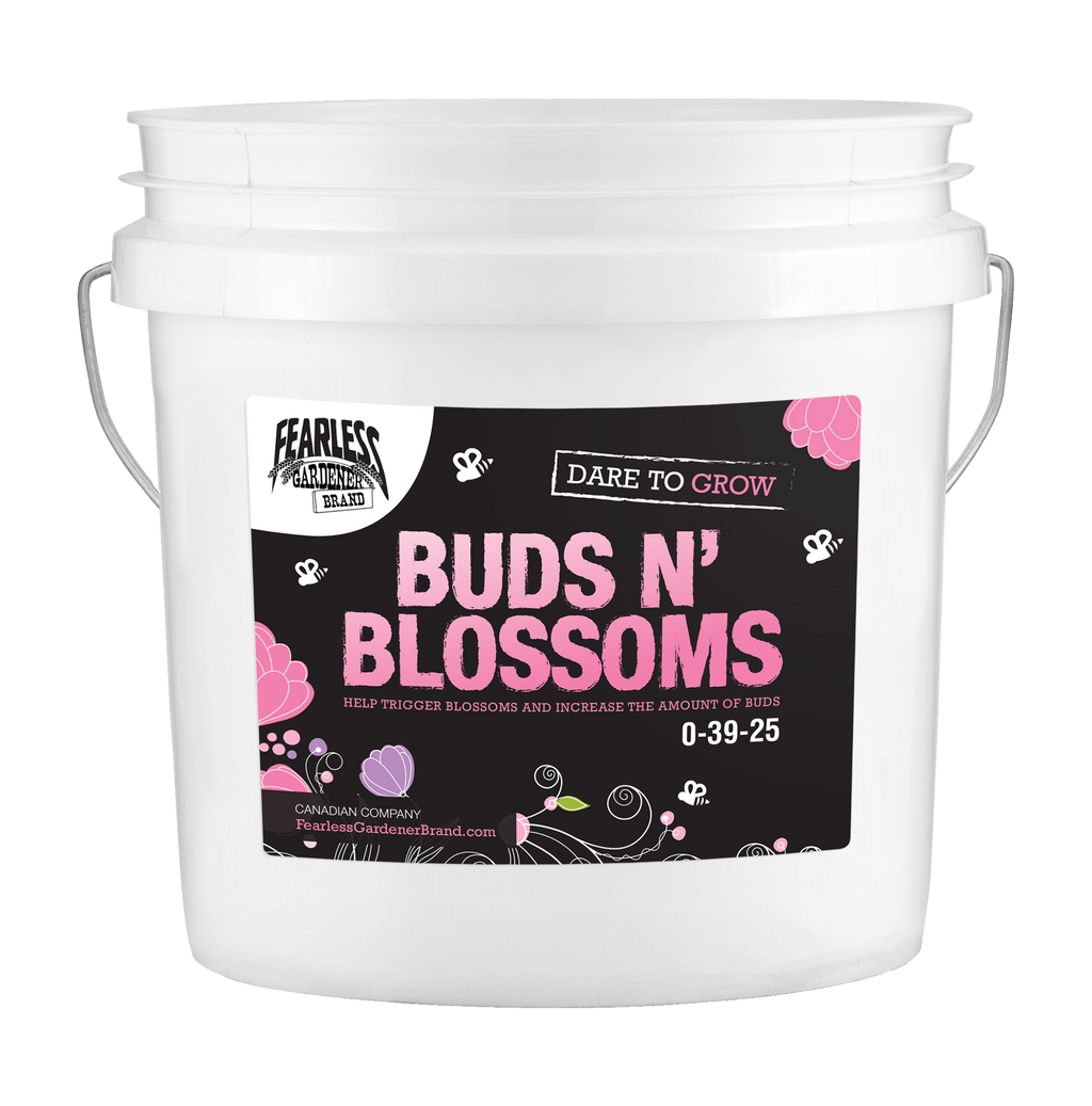 Dare To Grow - Buds N' Blossoms [0-39-25]