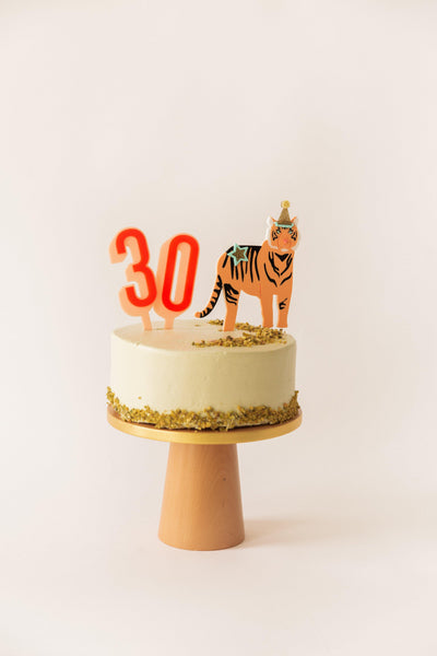 Party Tiger Acrylic Cake Topper