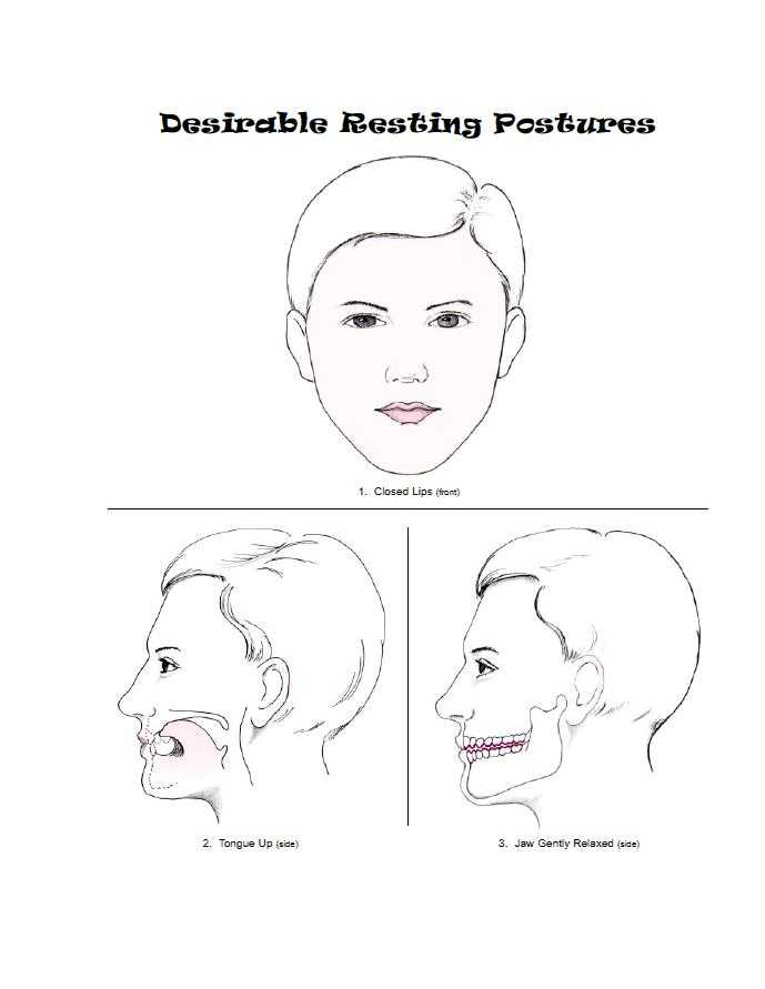 Oral-Facial Illustrations and Reference Guide (eBook)