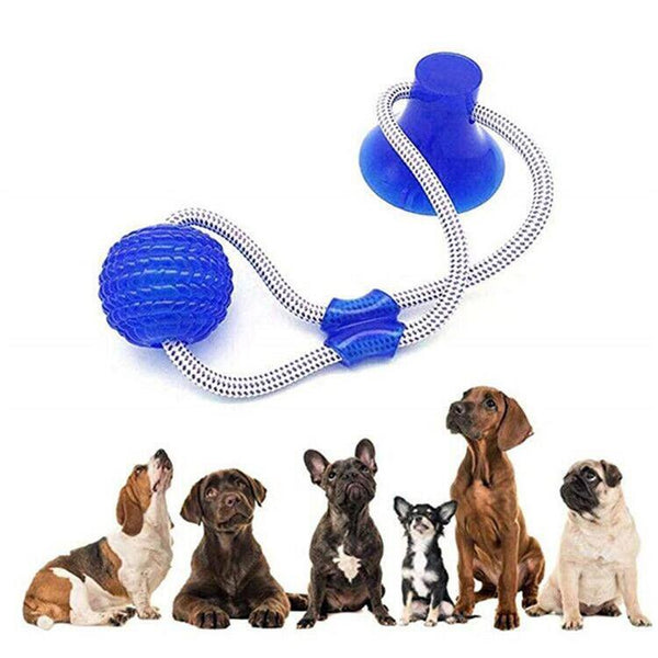 Christmas 60%OFF🔥Suction Cup Dog Tug Toy
