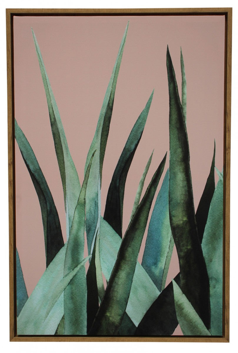 Framed Canvas Agave