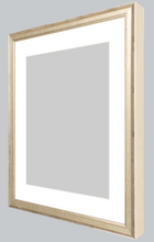 Load image into Gallery viewer, certificate-silver-custom-frame