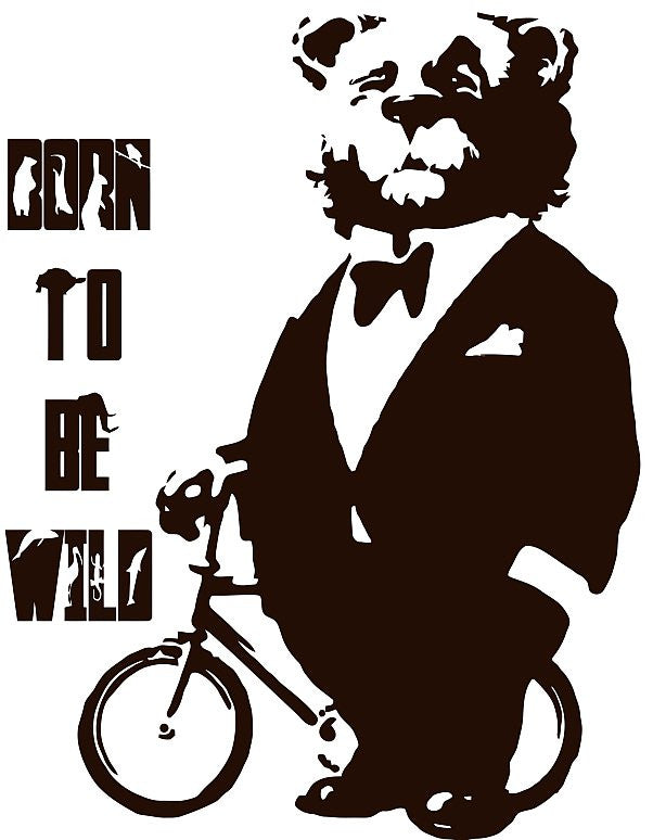 "Circus Bear In Suit With Bicycle Born To Be WIld 11.5"" Or 23"" Die Cut Vinyl Wall Decal Sticker"
