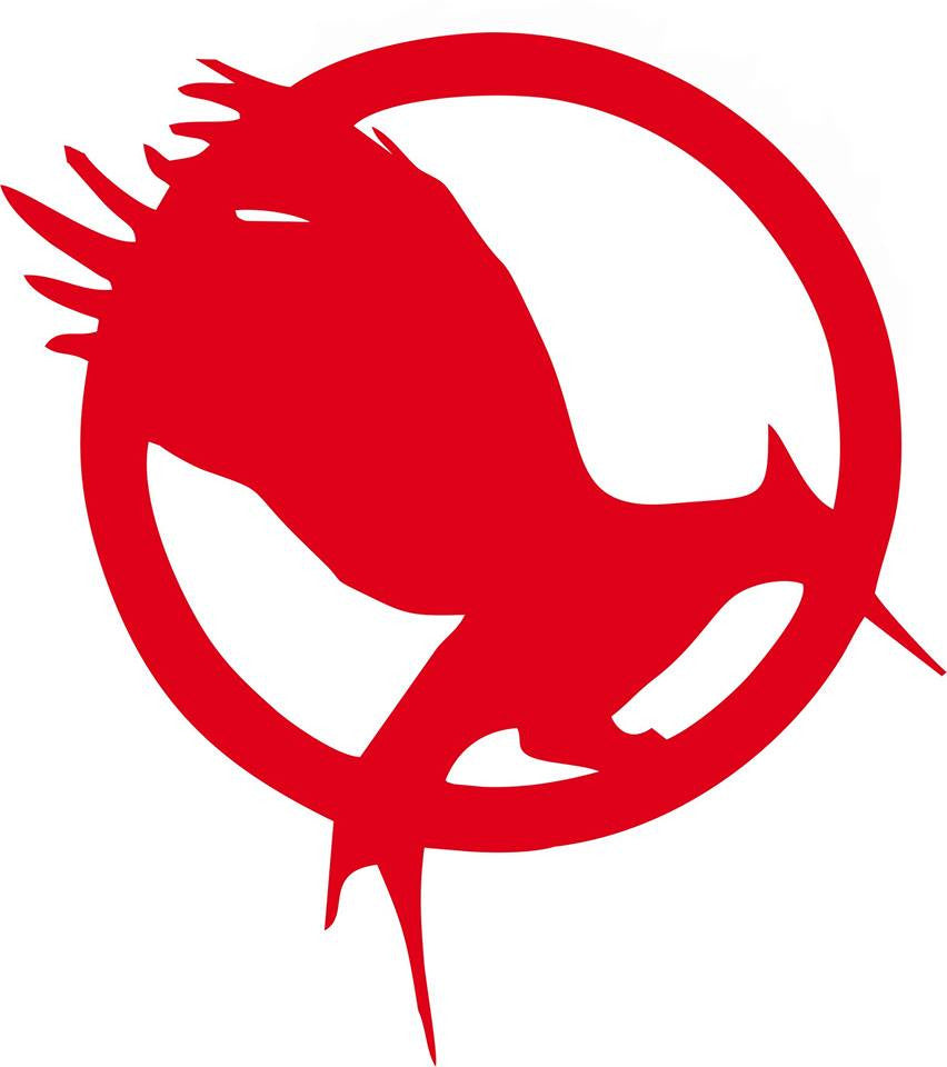 The Hunger Games Saga Catching Fire Logo | Die Cut Vinyl Sticker Decal | Blasted Rat