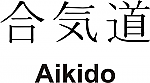 Aikido Kanji JDM Racing | Die Cut Vinyl Sticker Decal | Blasted Rat