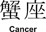 Cancer Kanji JDM Racing | Die Cut Vinyl Sticker Decal | Blasted Rat