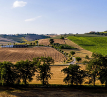 Load image into Gallery viewer, Mancini Pasta Farm Italy