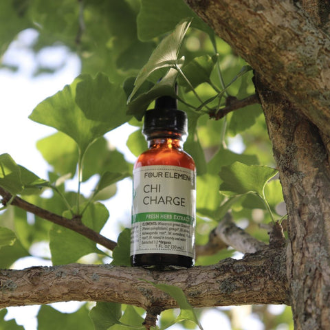 Chi Charge Herbal Tincture Blend