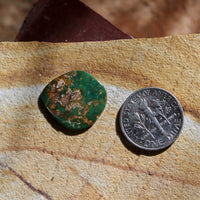 5.8 carat dark green Stone Mountain Turquoise cabochon
