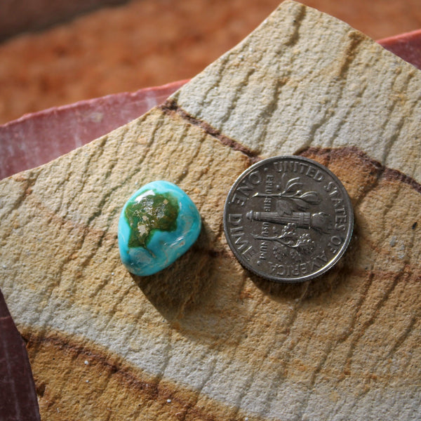 5.7 carat color change Stone Mountain Turquoise cabochon with a high dome