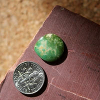 Green and brown with a tight corner on this Stone Mountain Turquoise cabochon