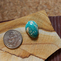 21 carat icy blue Stone Mountain Turquoise high dome cabochon with waterweb inclusions - Nevada Cassidys