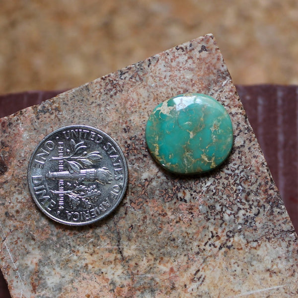 4.8 carat round green Stone Mountain Turquoise cabochon
