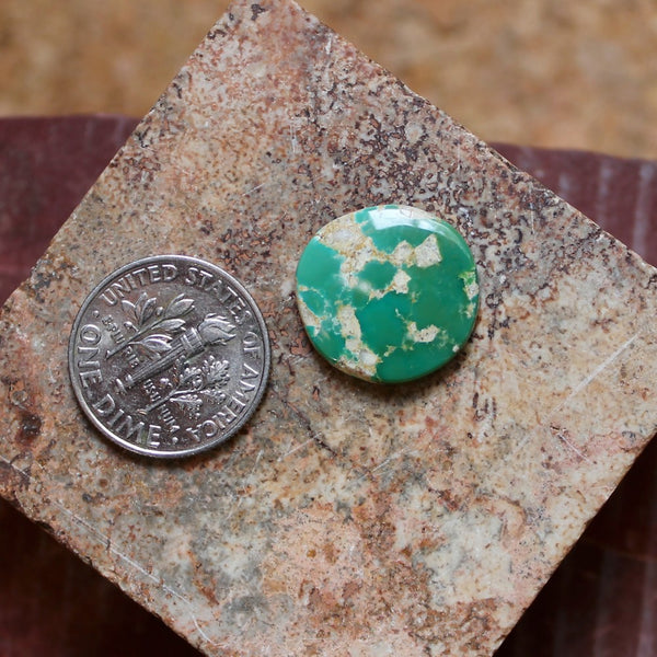 6.8 carat green round Stone Mountain Turquoise cabochon