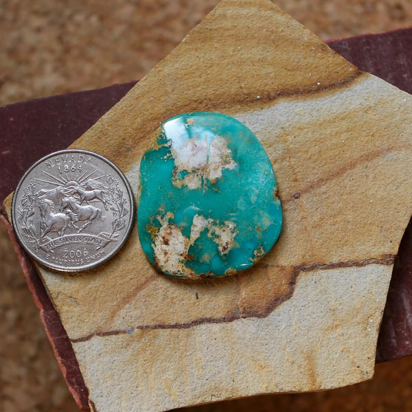 36 carat teal Stone Mountain Turquoise cabochon with tan matrix - Nevada Cassidys