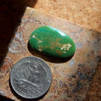 Forest green and color change on this natural Nevada turquoise cabochon